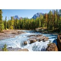 Пъзел - Athabasca River, Jasper National Park, Canada
