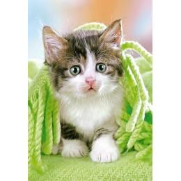 Пъзел - Kitten under the Blanket