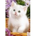 Пъзел - White Kitten in Basket